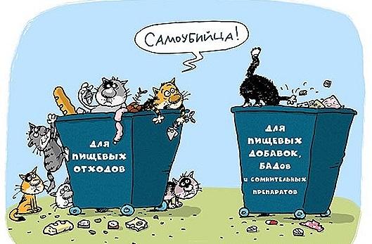 Константин Монастырский, функциональное питание