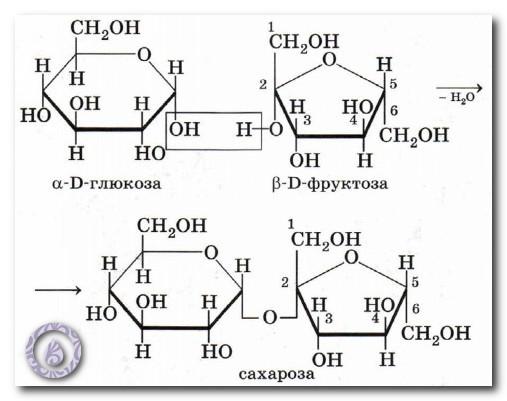 фруктоза и сахар разница