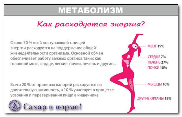 обмен веществ, лишний вес