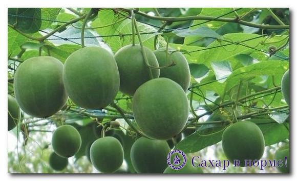 фрукт Луо Хан Гуо в сахарозаменителе Лаканто