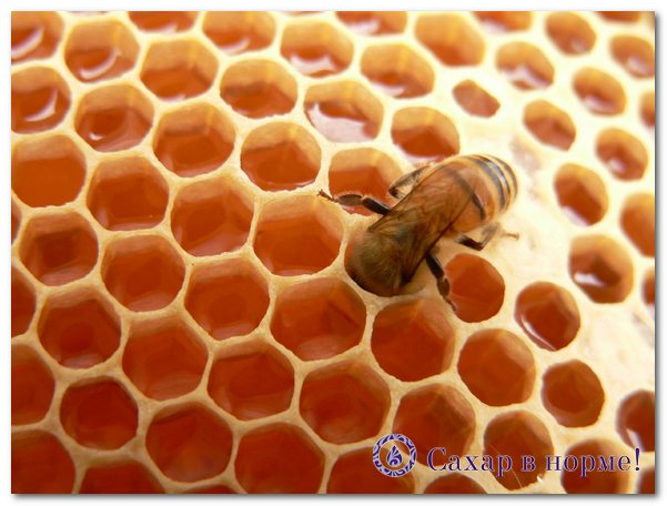 мед при сахарном диабете можно или нет